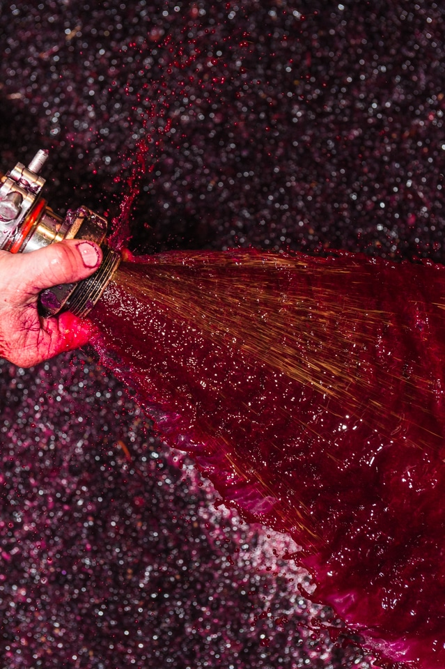 Vinification: Soutirage