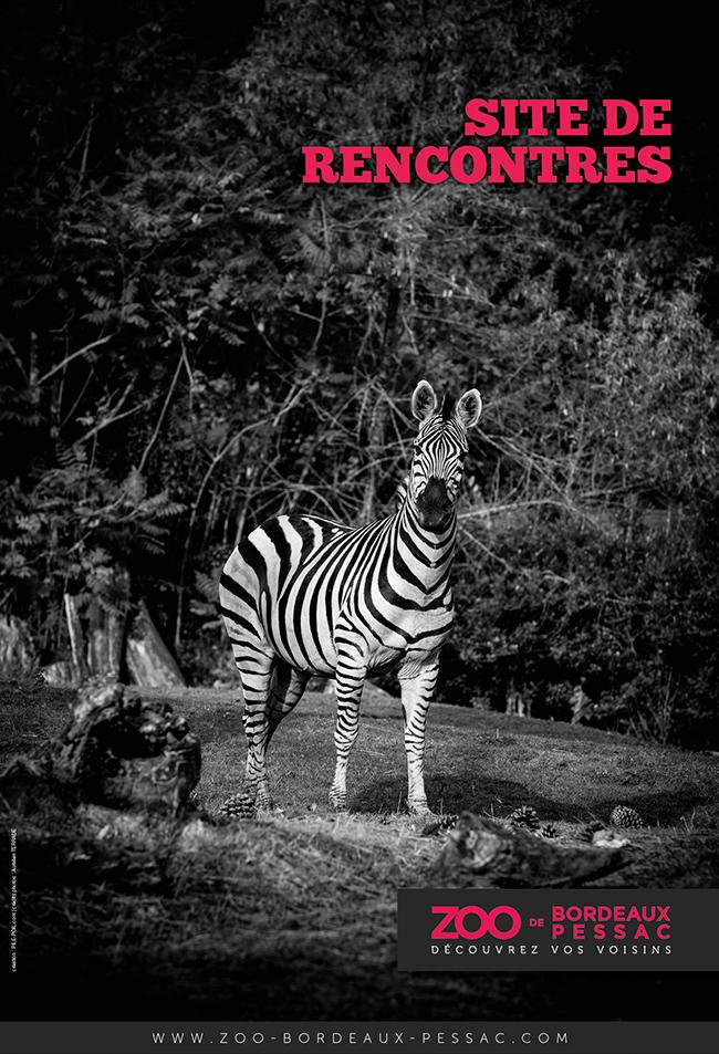 Zoo de Bordeaux-Pessac publicité